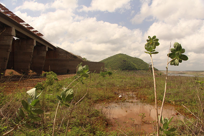Açude Banabuiú seco. (Foto: Jéssica Welma/Tribuna do Ceará)
