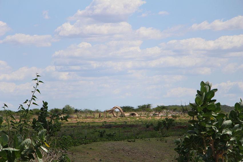 Antiga caixa d'água da Velha Jaguaribara. (Foto: Jéssica Welma/Tribuna do Ceará)